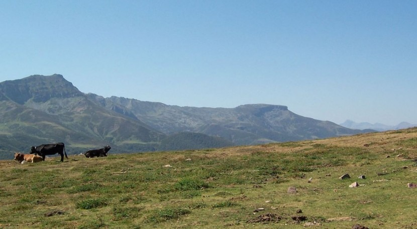 Cantabria transporta agua camiones cisternas pueblos afectados sequía