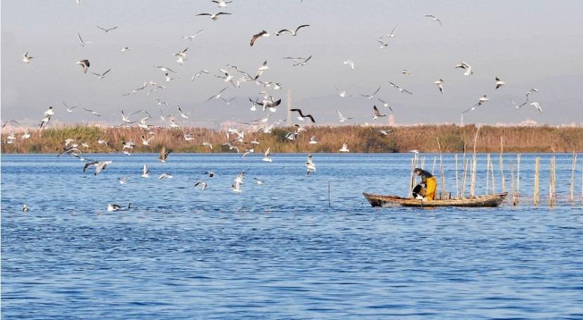 Albufera Valencia sigue recuperarse pese casi 30 años siendo humedal Ramsar