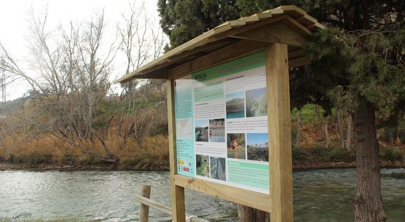 Murcia y CHS luchan cañas y recuperan bosque ribera río Segura