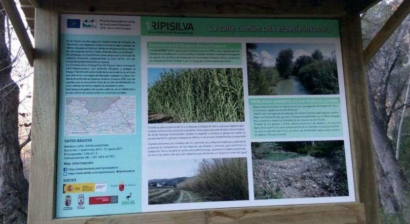 carteles divulgativos Segura concienciarán valor bosque ribera