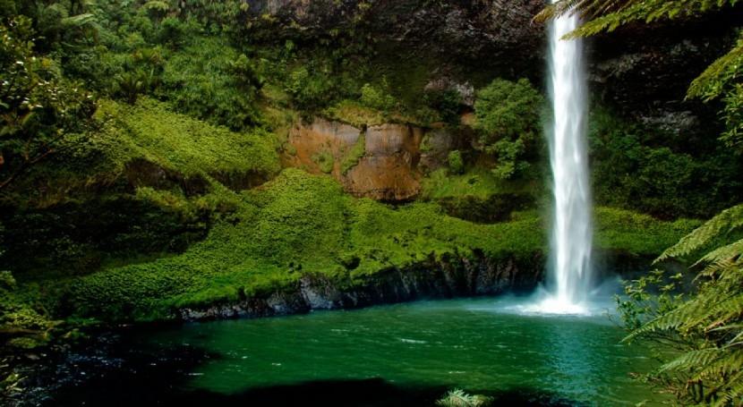 Nueva Zelanda limpiará aguas contaminadas