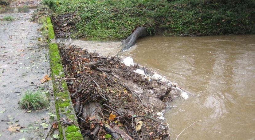 CHC realiza obras conservación y mantenimiento cauces ríos situación riesgo