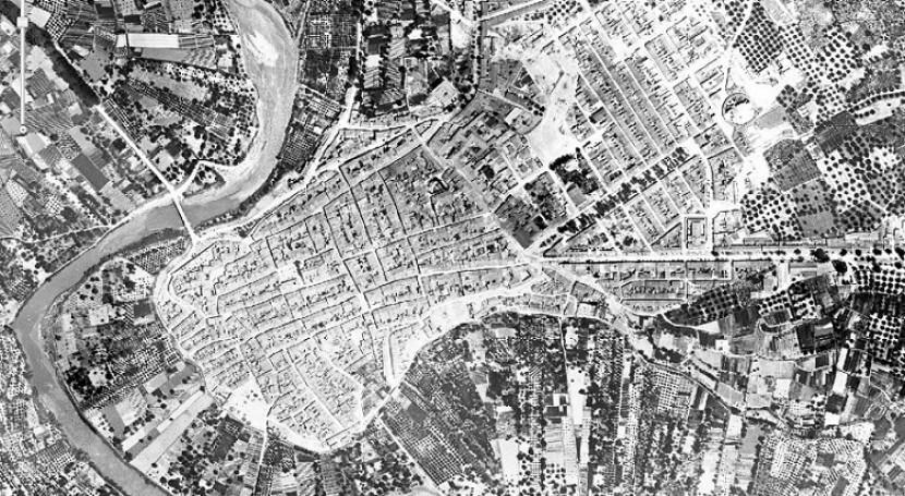 Cieza en 1929