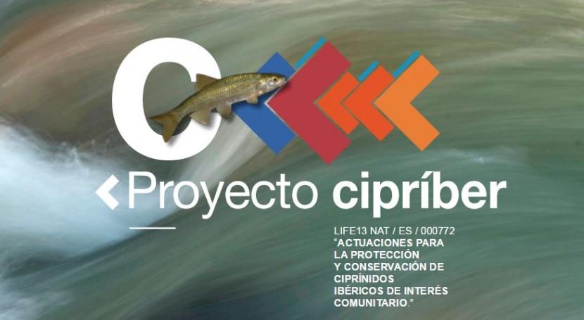 LIFE CIPRIBER: marcha recuperación endémica ciprínidos Salamanca