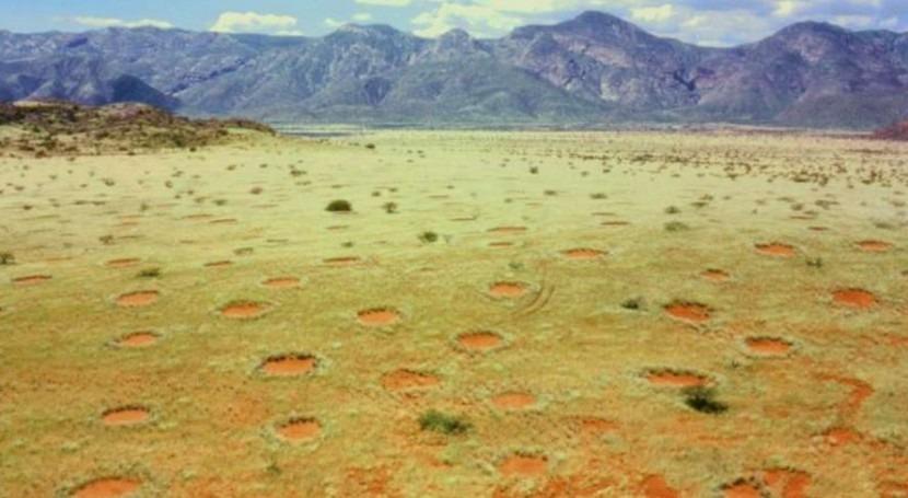 Misterio resuelto: agua causa extraños círculos que se forman campos Australia