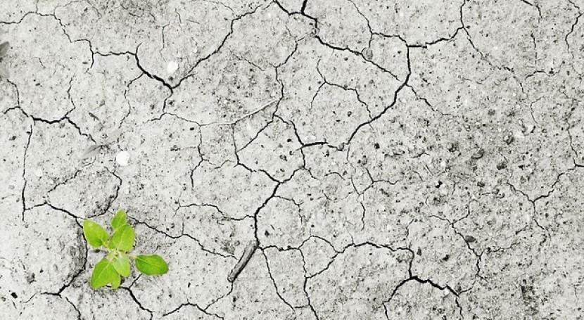 estudio indica que cambio climático global puede costar seis veces más lo pensado