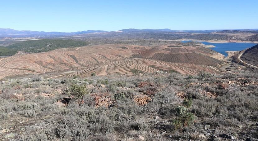 marcha repoblación forestal monte protector embalse Alcorlo