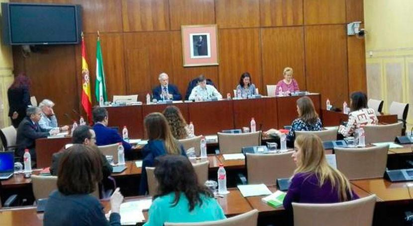 Defensor Pueblo Andaluz pide políticas agua pobreza hídrica
