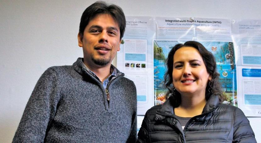 acuicultura, estrategia mitigar efectos cambio climático Chile