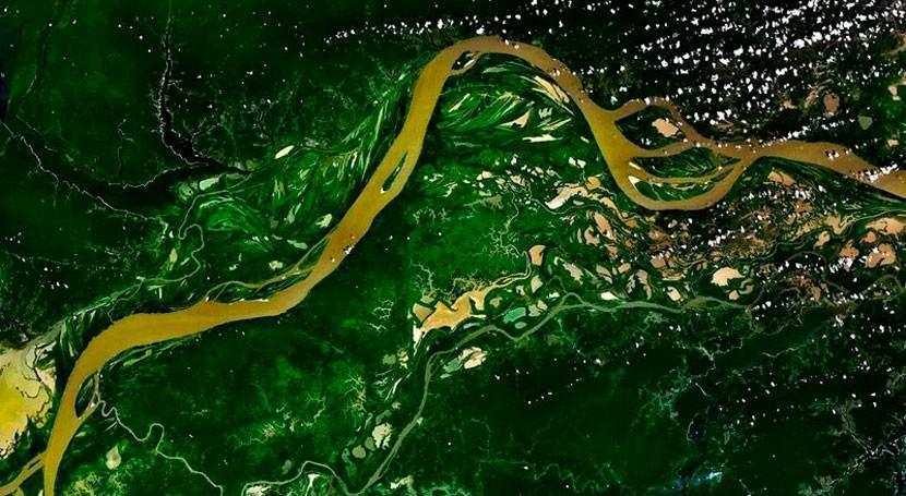 ¿Cómo influye contaminación Manaos fotosíntesis y lluvias Amazonia?