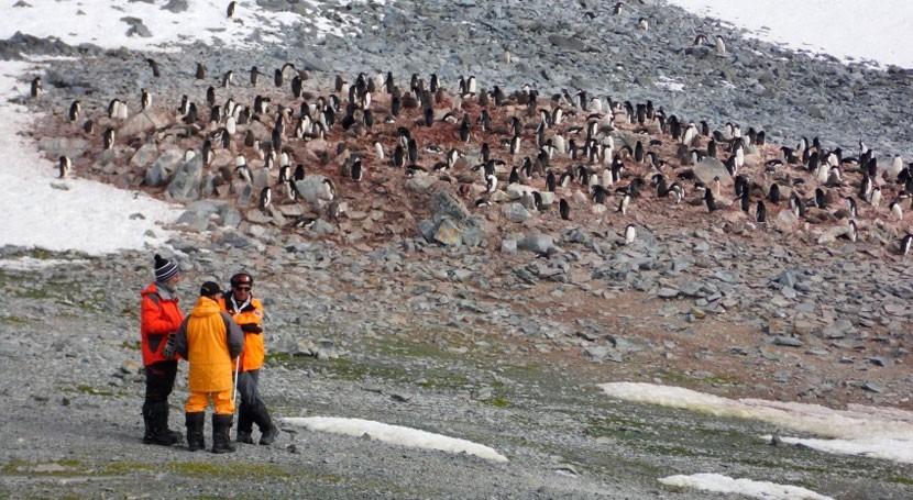 contaminantes emergentes llegan península antártica