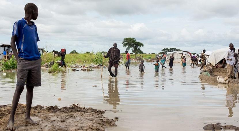 COP24: papel agua alcanzar neutralidad climática