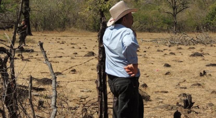 12.000 familias hondureñas Corredor Seco mejoran situación alimentaria