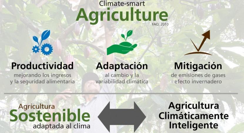 ¿Agricultura sostenible adaptada al clima o climáticamente inteligente? ¿Por qué no ambas?