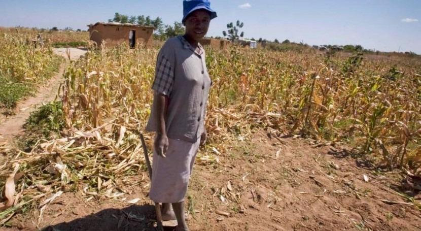 crisis humanitarias África se agudizan causa sequías