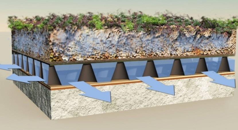 cubiertas vegetales evitan daños escorrentías lluvias fuertes