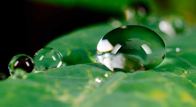 Cuidar agua es compromiso todos