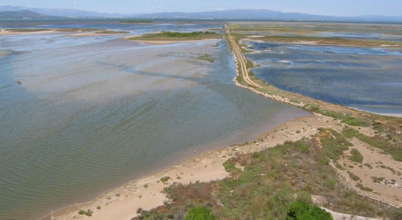 debate este fin semana principales problemas conservación delta Ebro