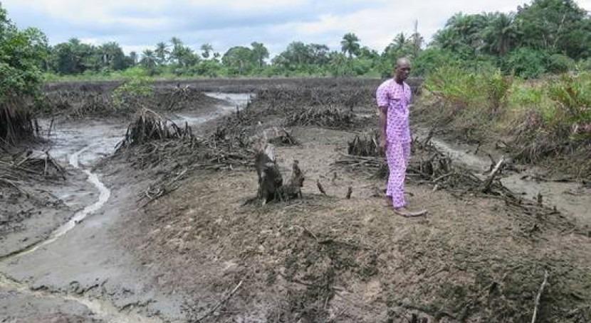 pesar promesas Shell, contaminación Delta Níger no mejora