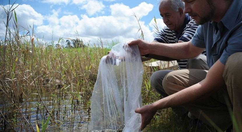 Un equipo usando técnicas de combate del dengue en Brasilia (Wikipedia/CC).