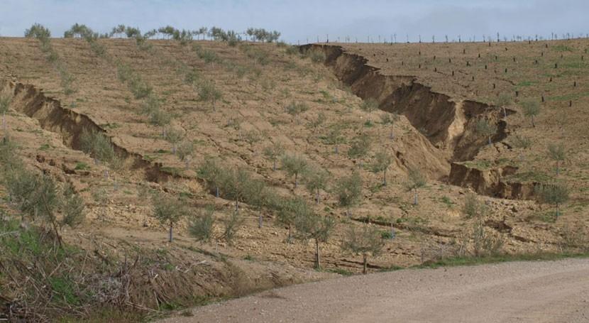 20% territorio español ya se ha desertificado