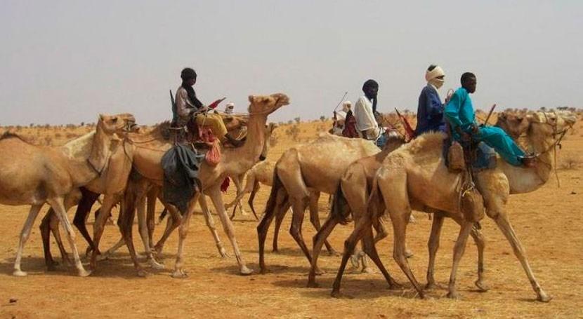 ¿Cómo afecta cambio climático al desplazamiento personas?