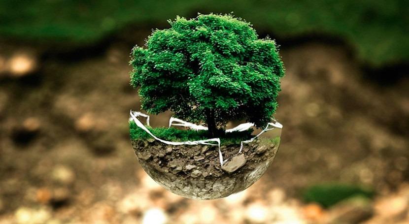 """"""" UPV debería implementar investigaciones que desarrollamos materia ambiental"""""""