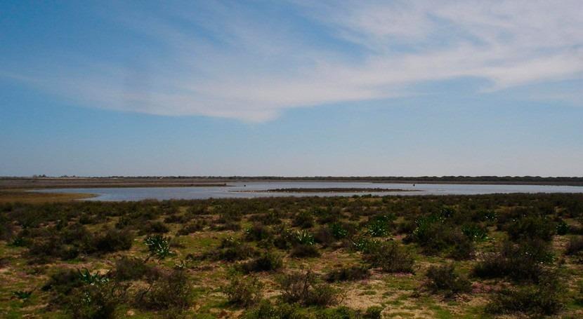 "Gobierno destaca ""controles exhaustivos"" riegos legales e ilegales Doñana"