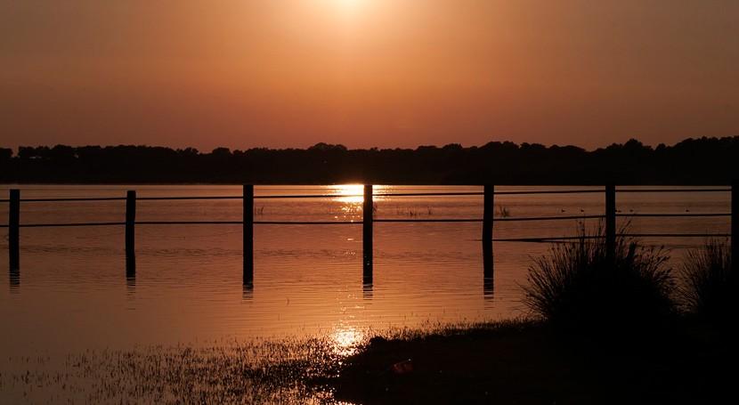 condicionado autorización ambiental Marisma Occidental protegerá Doñana