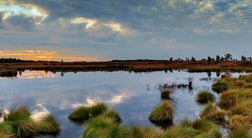 Extracción ilegal agua Doñana: ¿delito medioambiental o extracción ilegal aguas?