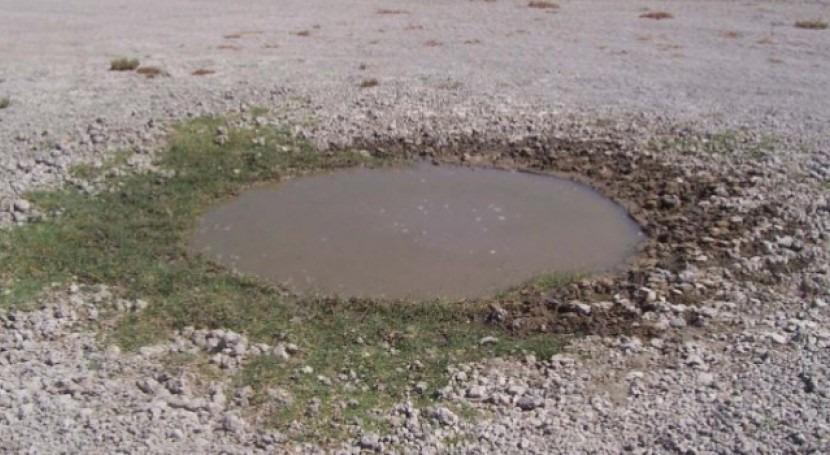 SEOBirdLife solicita al MITECO que respalde norma europea que protege agua
