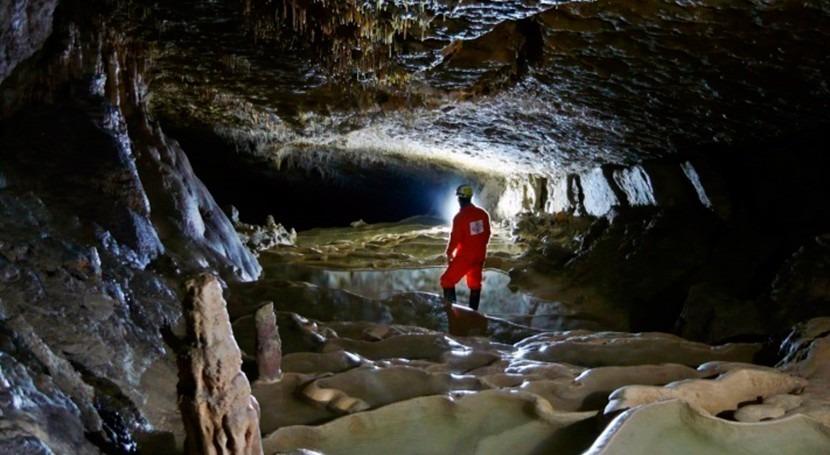 Dryas Reciente, fulminante evento climático que llevó planeta condiciones casi glaciares