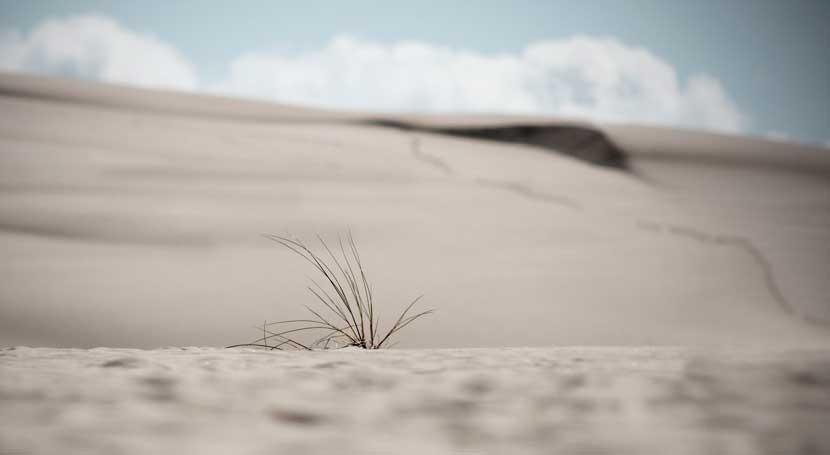 Perú y Australia cooperan juntos hacer frente sequía