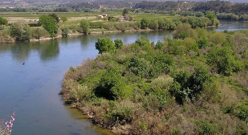 planes sequía y revisión planes hidrológicos, concurso
