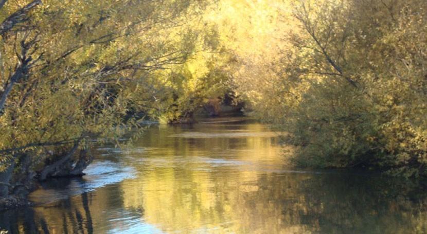 ecosistemas, fundamentales gestión y conservación agua Latinoamérica