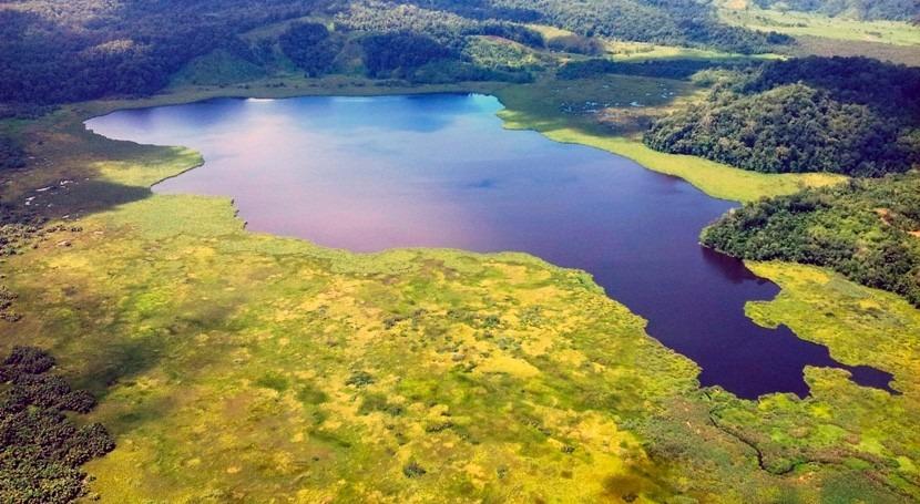 Nitratos abono llegan grandes cantidades al mayor humedal Costa Rica