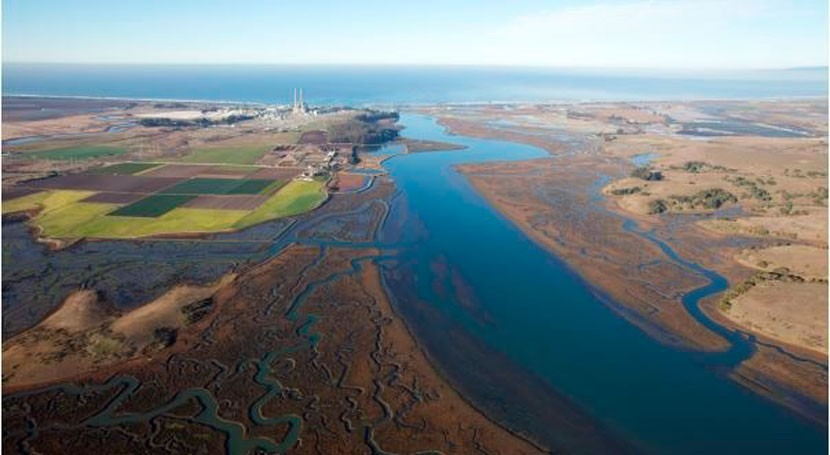 Elkhorn Slough se convierte 39º Humedal Importancia Internacional EEUU