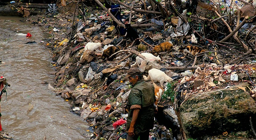 degradación ambiental causa tantas muertes prematuras al año como conflictos
