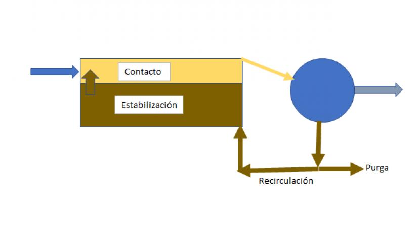 Fangos activos, procesos perdidos: contacto-estabilización