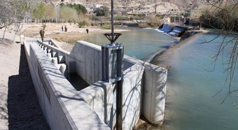Confederación Hidrográfica Segura celebra Semana Peces Migradores