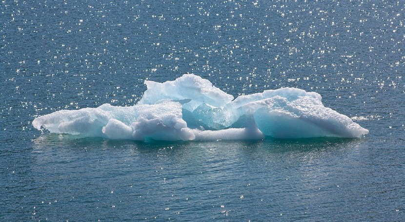 ecosistemas Ártico, sensibles al cambio climático
