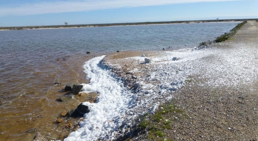 espuma blanca Salinas San Pedro Pinatar se debe proceso natural