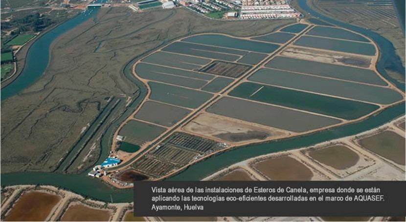 energía hidrógeno, testada primera vez sector acuícola España