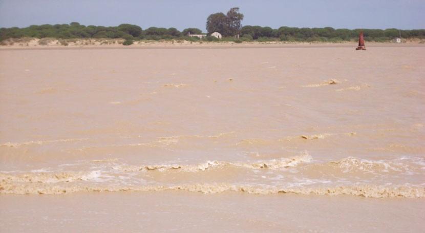 gestión sistema presas estuario Guadalquivir afecta negativamente aguas