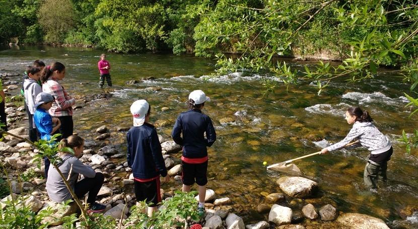 bosques ribera, verdaderos olvidados nuestros ríos
