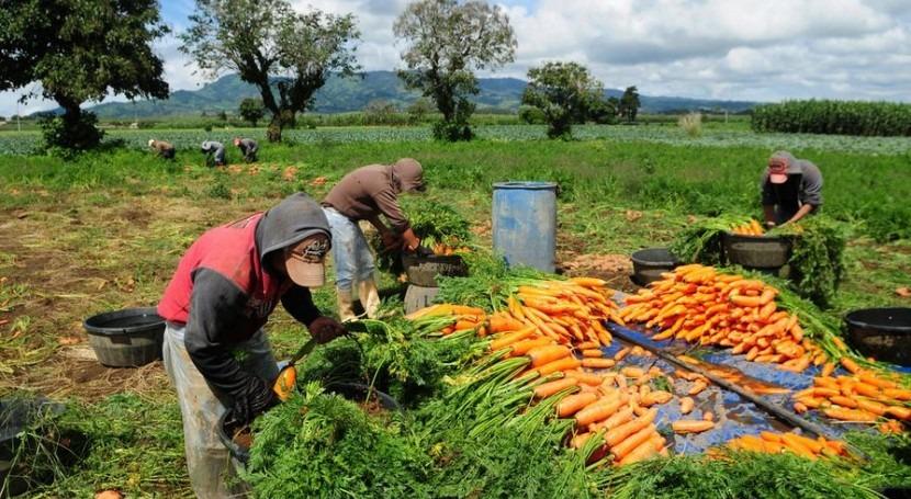 agricultura debe cambiar, afirma FAO
