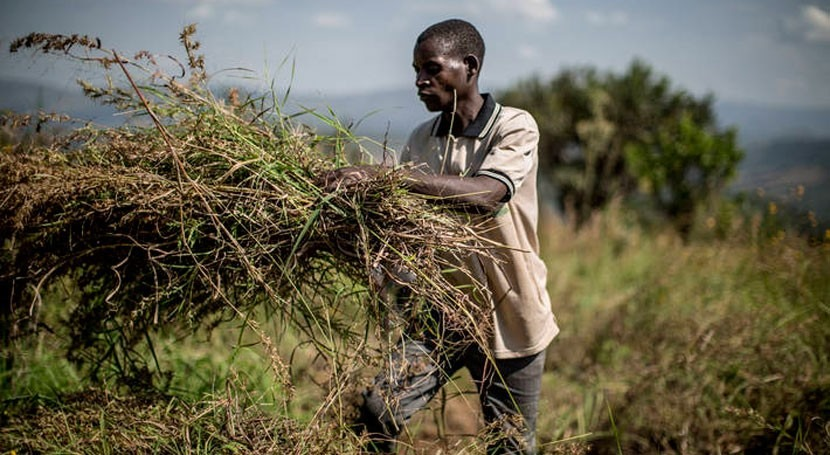 sequía suma dos países más lista que necesitan ayuda alimentaria externa