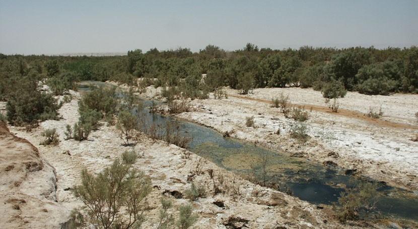 Fifa Nature Reserve, Jordania, es Humedal Importancia Internacional más mundo