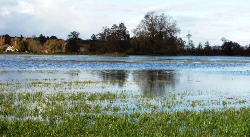 Flood-up: Ciencia ciudadana prevenir efectos inundaciones