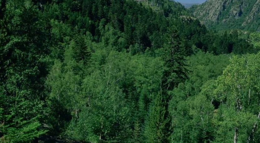 España contribuirá 120 millones euros al Fondo Verde Clima